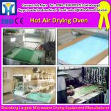 Low Price DMH purifying sterilizing drying Oven