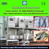 Strawberries Freeze Dryer Lyophilizer